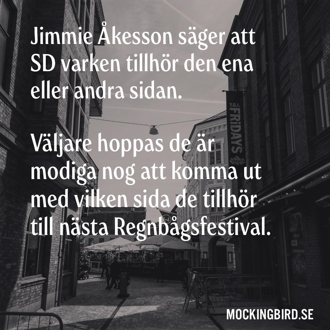 Jimmie Åkesson säger att SD varken tillhör den ena eller andra sidan. Väljare hoppas de är modiga nog att komma ut med vilken sida de tillhör till nästa Regnbågsfestival.