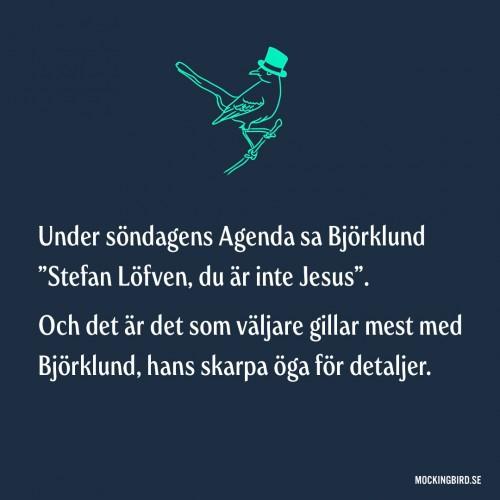 """Under söndagens Agenda sa Björklund """"Stefan Löfven, du är inte Jesus"""". Och det är det som väljare gillar mest med Björklund, hans skarpa öga för detaljer."""